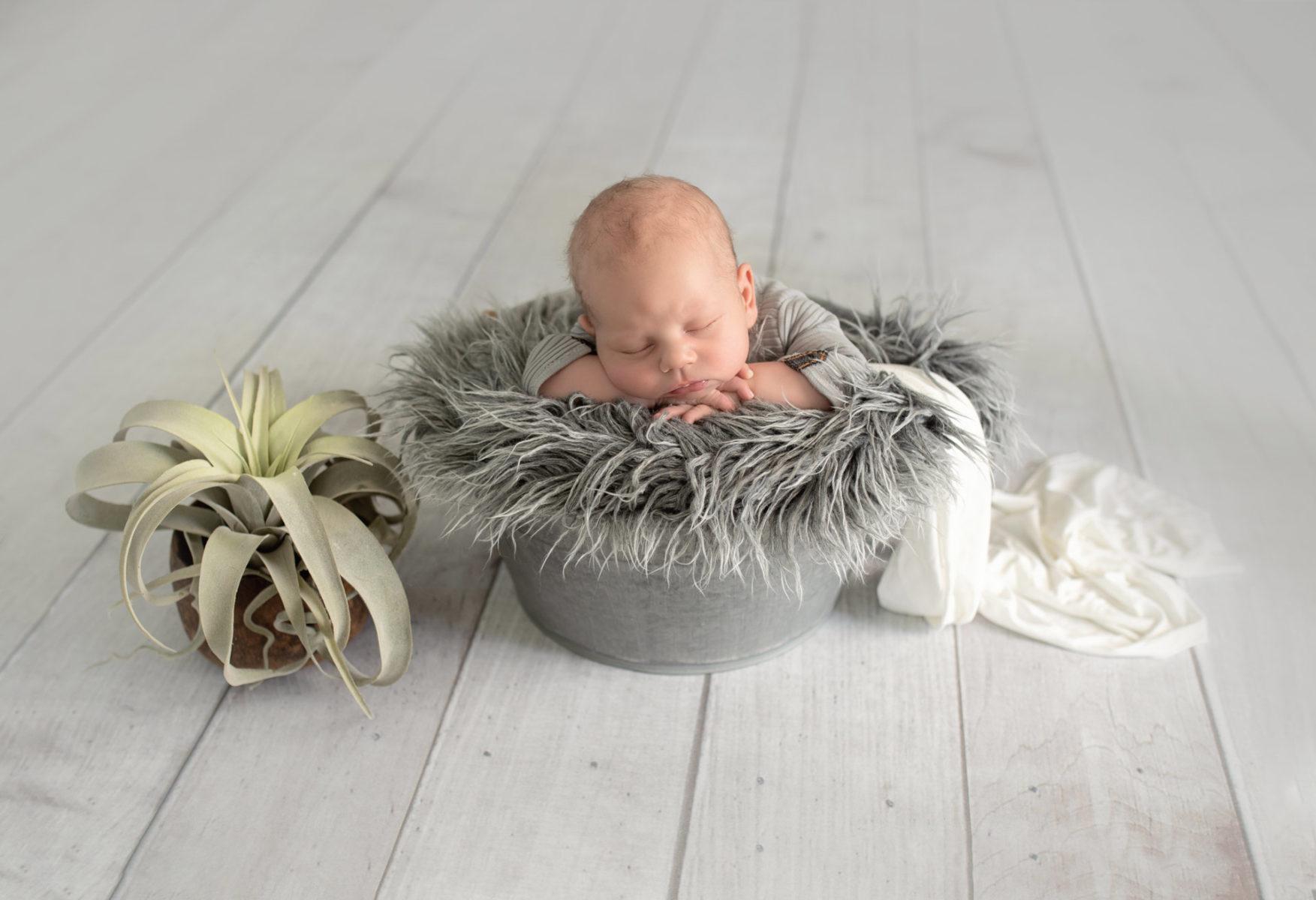 Newbornshooting Neugeborenen Shooting Fotos Studio Erftstadt Köln Bonn Aachen Düren Bergheim